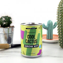 Odlingskit Cool Cactus